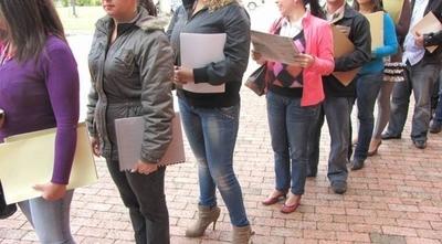 HOY / En sector terciario se resiente más el desempleo: mujeres del área urbana se vieron afectadas