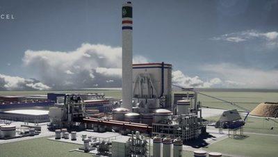Concepción: MTESS busca 8.000 trabajadores para la construcción de una planta de celulosa
