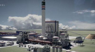 Concepción: Buscan 8.000 trabajadores para la construcción de una planta de celulosa