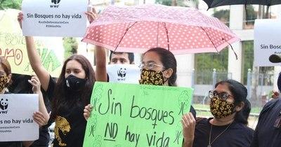 La Nación / Senado aprueba ampliación de Ley de Deforestación Cero