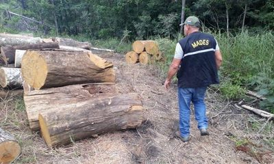 """Aprueban prorrogar por 10 años vigencia de ley """"Deforestación Cero» para la región Oriental"""