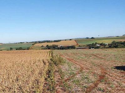 """Denuncian al Mtess por """"apriete"""" a agricultores y comerciantes"""