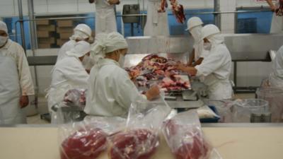 La exportación de carne bovina apunta a alcanzar un nuevo récord
