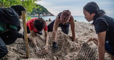 La Nación / Hallan en Ecuador nido de la enorme tortuga laúd, especie en riesgo de extinción