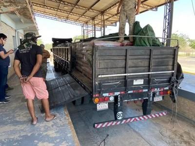 Ausencia del Estado y tímidos controles avivan a cárteles de droga, que vulneran a placer territorio fronterizo
