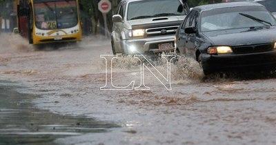 La Nación / Alertan sobre calles bloqueadas por árboles caídos y hundimiento de pavimento tras temporal