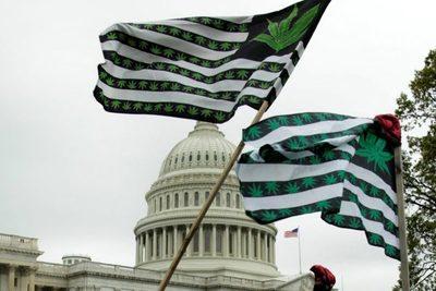 EEUU: la Cámara de Representantes aprobó la despenalización de la marihuana a nivel federal