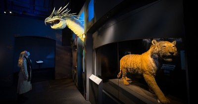 """La Nación / Los """"animales fantásticos"""" de J.K. Rowling toman vida en un museo"""