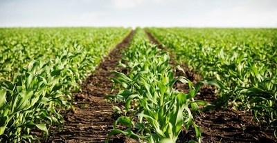 Destacan avances en materia de agricultura mecanizada