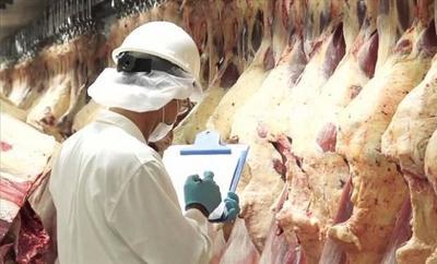 Senacsa espera cerrar el año con nueva marca histórica en exportaciones