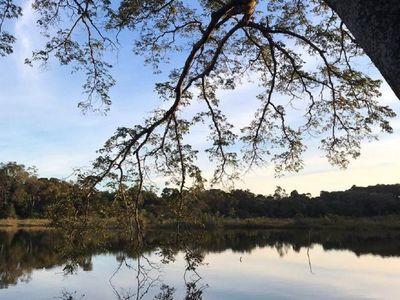 Diputados modifican proyecto y eliminan posible expropiación de bosque de laguna Yrendy