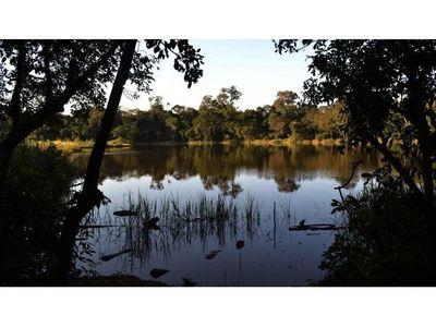Diputados frena la  expropiación del Bosque Atlántico del lago Yrendy en CDE