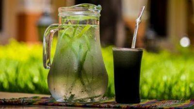 La UNESCO decidirá en París esta mañana si la tradicional bebida paraguaya es reconocido como riqueza inmaterial mundial
