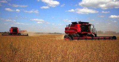 La Nación / Capeco resalta récord en la exportación de soja