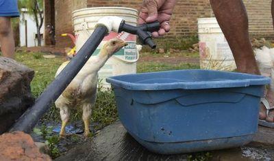 En plena Navidad, la Essap deja sin agua a San Antonio
