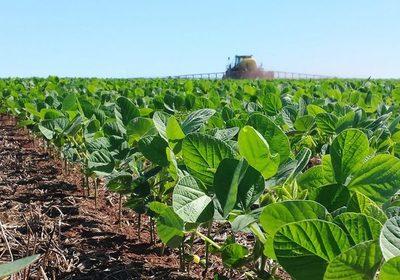 Precipitaciones en enero serán por debajo de lo normal, con riesgos de sequía para cultivos