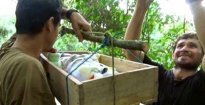 Cruel video del EPP haciendo cruzar el río a un recién nacido en una caja