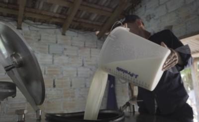 Sector lácteo busca aumentar consumo para sostener producción anual
