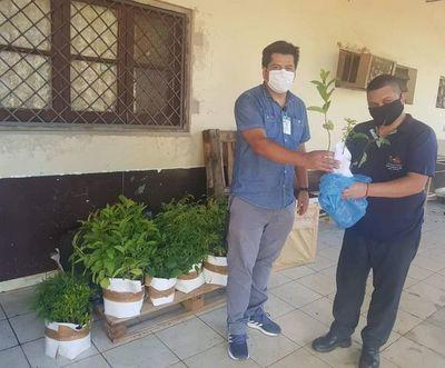 Proyecto Ñoty busca distribuir 5.000 plantines
