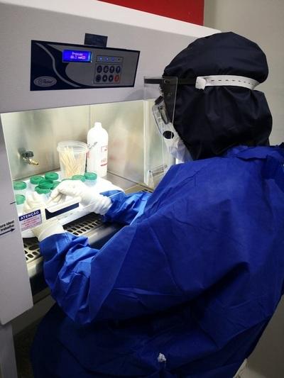 Arribó tercera donación de test rápidos para covid-19 de la OIEA