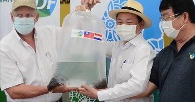La Nación / Destacan asistencia de Misión Técnica de Taiwán para producción de surubí