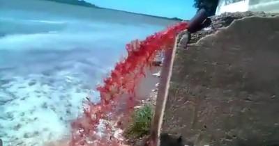 La Nación / Imputan a directivos de frigorífico que arrojó desechos al río Paraguay