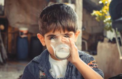 Pese a la pandemia, el sector lácteo nacional pudo seguir trabajando al 100% durante 2020