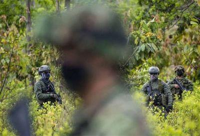 Perú destruyó en 2020 unas 42,5 toneladas de drogas, entre ellas 30 son de cocaína