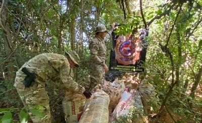 HOY / Decomisan más de 8 toneladas de marihuana y capturan a traficante en Maracaná