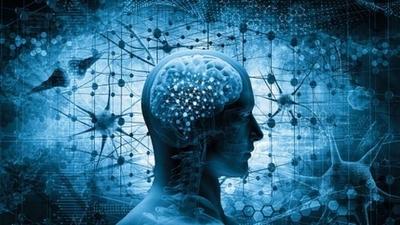 """HOY / Seis formas de """"reiniciar tu cerebro"""" tras un año difícil de COVID-19"""