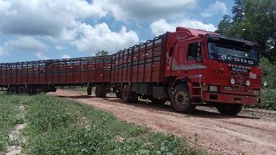 Detienen a seis presuntos abigeos en Alto Paraguay