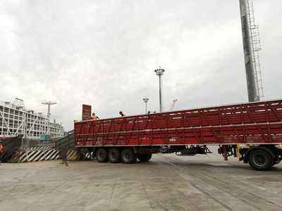 Uruguay registró en 2020 un mínimo en seis años en exportaciones en pie a Turquía