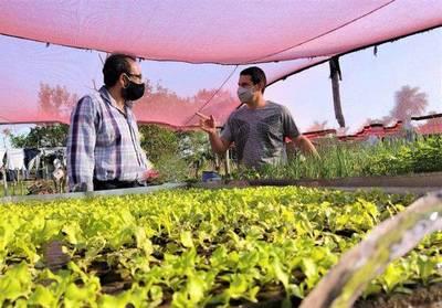 Cien mil productores serán asistidos este 2021 por el Crédito Agrícola