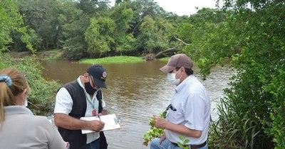 La Nación / Denuncian mortandad de peces en el arroyo Caañabé