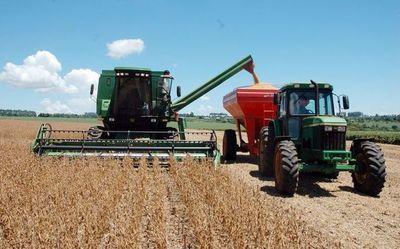 Productores esperan alto rendimiento de soja tras sostenidas lluvias