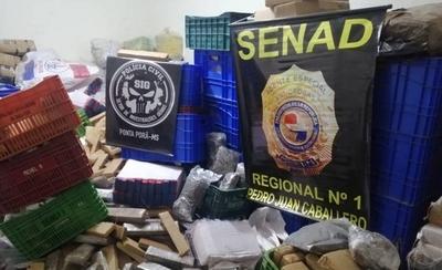 HOY / Policía brasileña y Senad incautan 660 kilos en Pedro Juan y Ponta Porâ