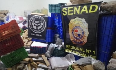 HOY / Policía brasileña y Senad incautan 660 kilos de marihuana