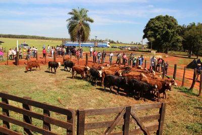 Retención por la enajenación de ganado vacuno arrancó en enero