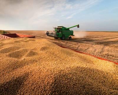 Aumento en el precio de la soja generará mayores divisas en el 2021