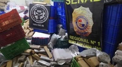 Policía brasileña y Senad incautan 660 kilos de marihuana