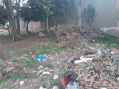 Municipalidad de Limpio emplaza a dueños de baldíos