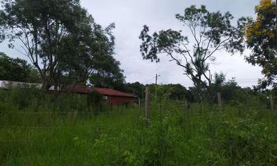 #DenunciaCiudadana; Vecinos claman por limpieza de terreno baldío – Prensa 5