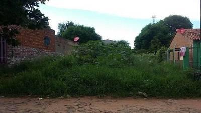 Autoridades municipales anuncian multas para propietarios de terrenos que no realizan la limpieza correspondiente