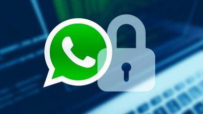 Recomendaciones sobre uso de WhatsApp ante nuevas políticas de privacidad