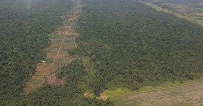 La Nación / Estudio de Infona comprueba deforestación en la estancia Pindó desde el 2012