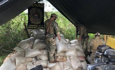 HOY / Incautan más de 8 toneladas de marihuana en campamento narco en Canindeyú