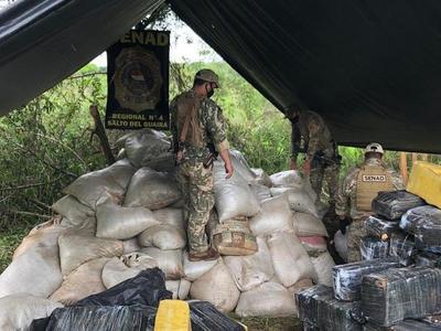 Incautan más de 8,6 toneladas de marihuana en campamento narco