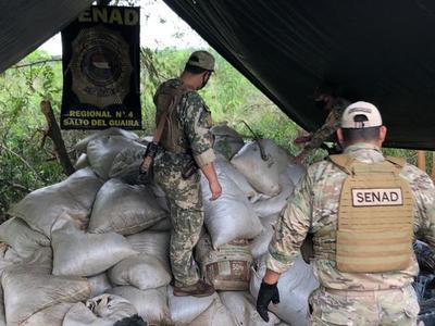 Destruyen campamento narco y más de 8 toneladas de marihuana