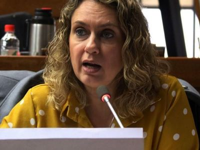 Diputada pide mirar motivos de penas bajas a corruptos