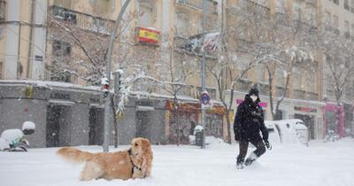 Crónica / (VIDEO) Caos por tormenta de nieve en España
